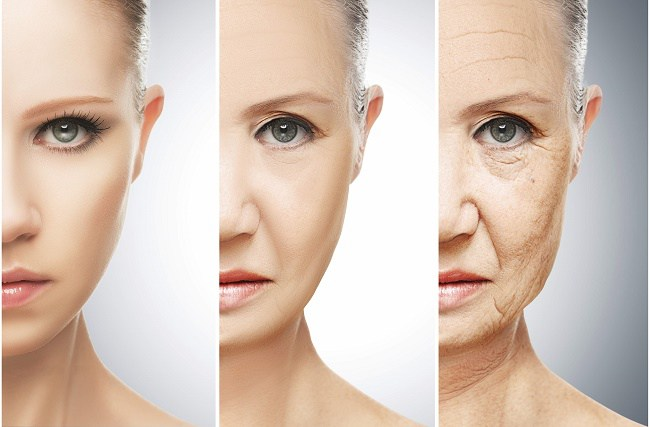 Aging slows down