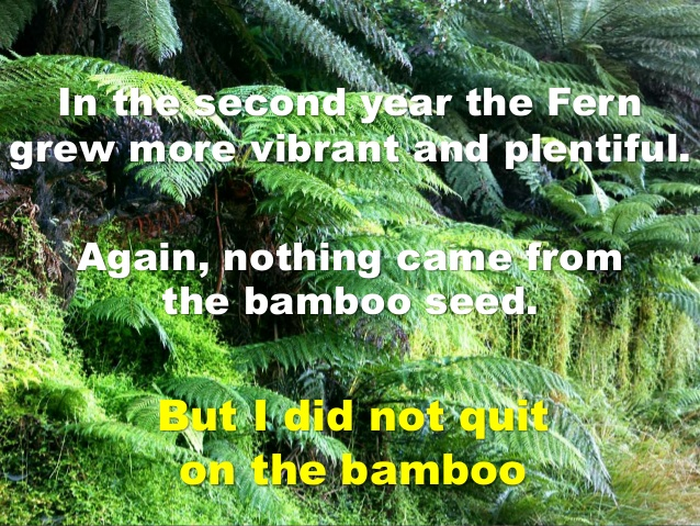 persevered with the fern and the bamboo